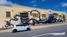 The Octopus by Phlegm