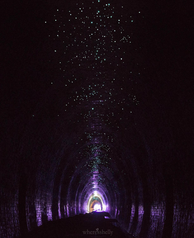 helensburgh-glow-worm-tunnel