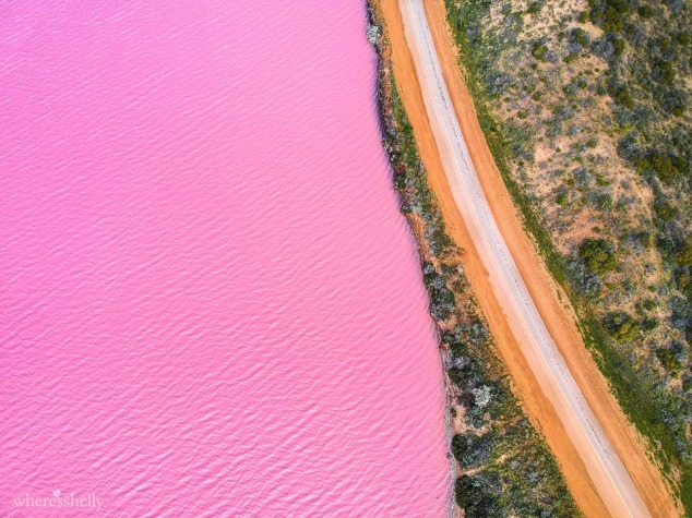 pink-lake-geraldton-hutt-lagoon-port-gregory